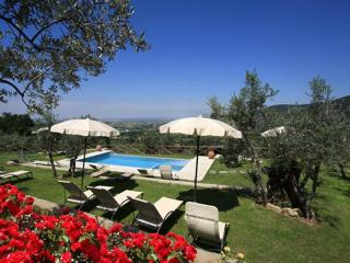 Romantic villa, pool, A/C, walking  Cortona - Tuscany vacation rentals