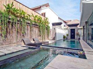 Ultra-Modern Seminyak Villa Great for Groups 2-7BR