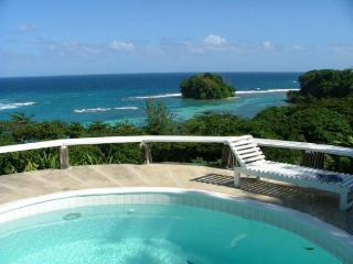 Halcyon - Port Antonio