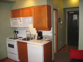 Fully Equipped Kitchen with Fridge, Stove and Microwave