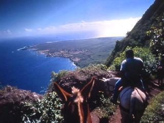 Mule Ride is a great experience on Molokai..