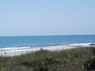 Sea Breeze is at the Beach!, Fernandina Beach