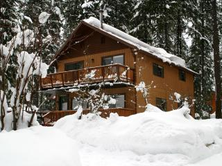 The Gotta Getaway - Ski Stevens Pass! - Leavenworth vacation rentals