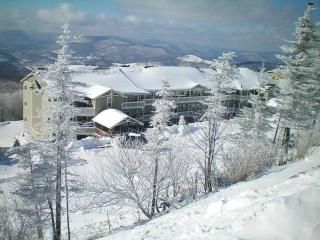 Village condo 3br/2ba-Dec 18-26 $350 night reg$495, Snowshoe