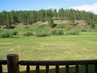 Black Hills Vacation Rental Cabins - Hill City SD