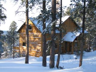Luxury Cabin in the Black Hills of South Dakota, Lead