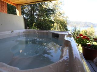 Raspberry Hill,  sauna , hot-tub , with lake view, Nelson