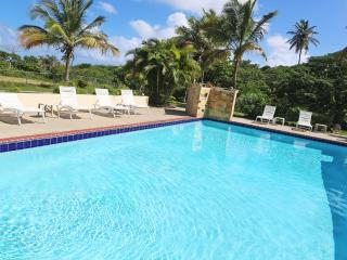 The Villa at Casa Ladera: Pool, steps to the beach, Île de Vieques