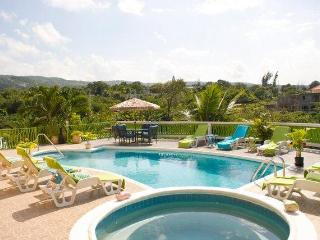 PARADISE DREAMCASTLE 8 BED VILLA IN MONTEGO BAY - Montego Bay vacation rentals