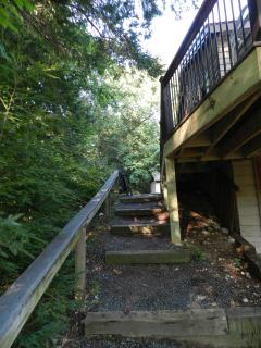 This is the way back to the driveway and deck entrance.