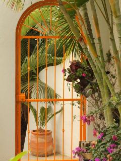 Your visit to Casa Vista de Yates is safe & secure with fences and gates throughout.