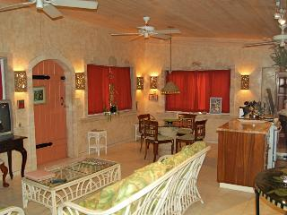 Amore Loft Apartment, Cruz Bay