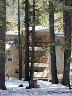 Your apartment in the Yosemite snow surrounded by pines