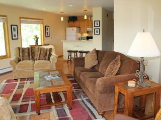 WH216 Attractive Condo w/Great Views, Wifi, Fireplace, Common Hot Tub, Silverthorne