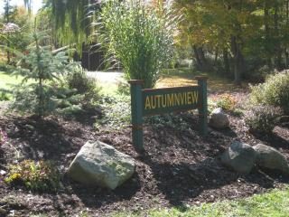 Autumnview Lodging (Pet Friendly) - East Aurora vacation rentals
