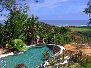 Toucan Studio - Dominical vacation rentals