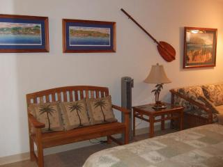 Beautiful, Clean, Well Decorated Oceanfront Condo, Kailua-Kona
