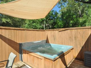 Comfy 2/1 w/ Private Hot Tub! King + queen bed, Austin