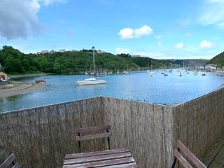 Pet Friendly Holiday Cottage - Caledonia House, Lower Town, Fishguard