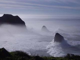 Spectacular Ocean Front Rental on Mendocino Coast