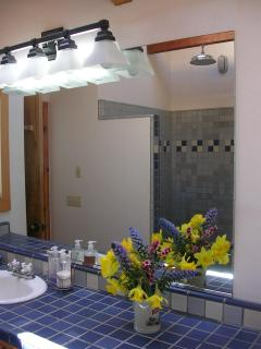 Master Bath with Oversized French Showerhead