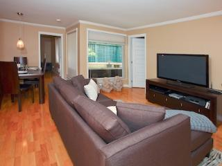 Downtown Vancouver 2 Bedroom Spectacular Well Appointed Executive Condo