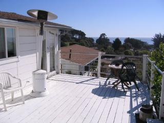 Cabin #1 - Stinson Beach vacation rentals
