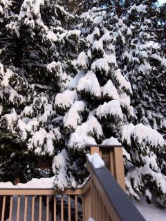 Enjoy the winter snow from Pine Arbor's front deck