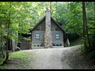 Private Log Cabins with lake access / kayaks !! - Bryson City vacation rentals
