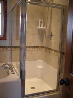 Soaker tub with separate shower in bathroom