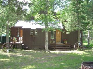 Cabin in the Woods Close to Glacier National Park - Hungry Horse vacation rentals