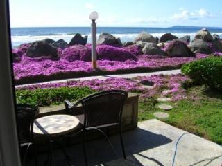 Best Kept Secret ~Steps To The Beach ~ Last Minute  & Fill-in the Gap Specials …Just Ask!, San Diego