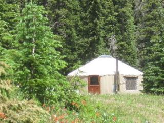 The Pass Creek Yurt, Pagosa Springs