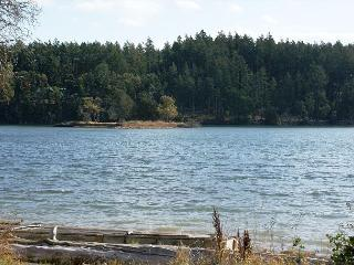 Waterfront Pet Friendly Waterfront Home with Hot Tub! (Mitchell Bay Shores), Friday Harbor