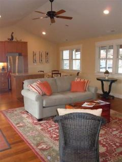 Great Room - Living/dining/kitchen combo