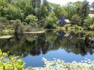 Best Price on Cape Cod, Wellfleet