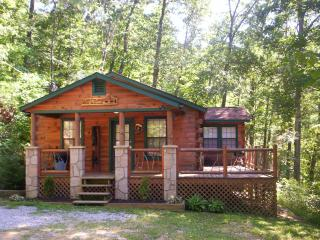 Luxury 2 Bd Cabin on 4 Private Wooded Acres, Sevierville
