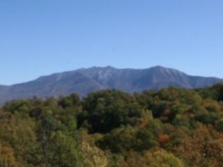 MAJESTIC VIEW - Image 1 - Gatlinburg - rentals