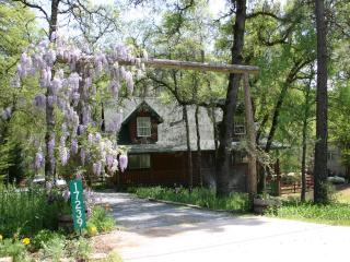 Log House on Trout Stream, Spa, Local Hiking, Grass Valley