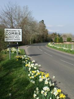 Entering Comrie in the spring
