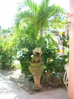 A fountain in the Tropical plants
