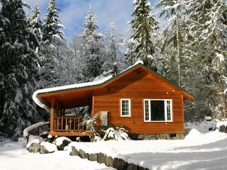 Dreamweaver Cabin @ Mt. Rainier - South Cascades Area vacation rentals