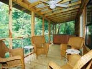 White River Cabin for 6, hot tub, fireplace, nice!, Norfork