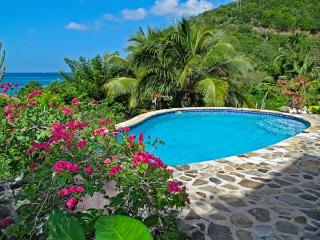Villa Del Sole & Piccolo Sole at Mahoe Bay, Virgin Gorda - New Gazebo, Private Pool, Communal Tennis