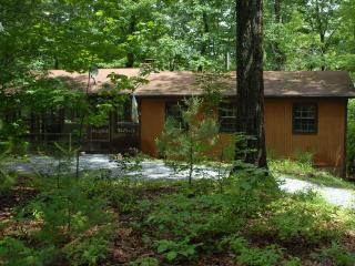 Secluded Cozy Mountain Cabin with Hot Tub, Luray