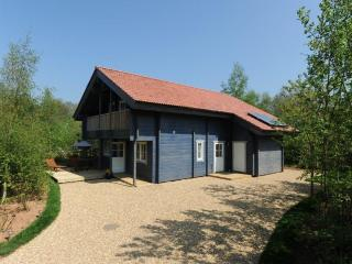 Robins Eco Lodge, Mill Meadow, Taunton, Somerset - Taunton vacation rentals