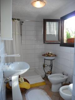 Second bathroom with full size walk in shower