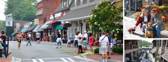 Shopping in Blue Ridge offers so many options