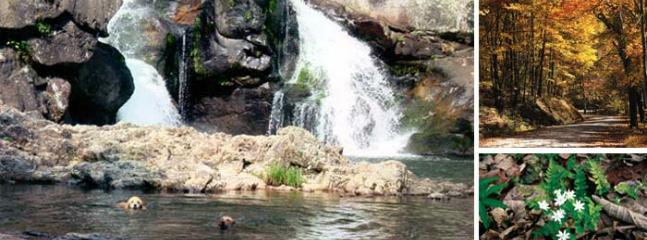 Take in the beautiful scenery of the many waterfall areas nearby