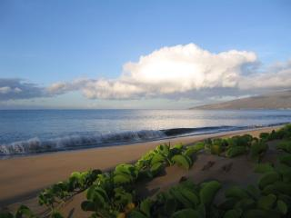 BEACHFRONT-Remodeled Plantation Style-Sleeps 2, Kihei